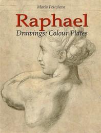 Raphael: Drawings Colour Plates - Librerie.coop