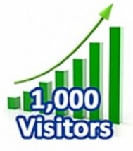 1,000 Visitors in One Month - copertina