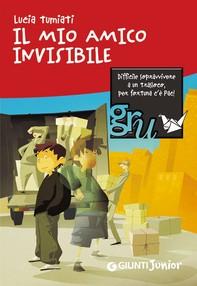 Il mio amico invisibile - Librerie.coop