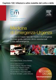 INFEZIONI E ALTRE MALATTIE DEL COLLO E DELLE VIE AEREE SUPERIORI (ECAP122) - copertina