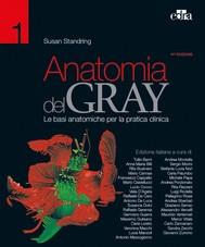 Anatomia del Gray 41 ed. - copertina