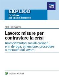 EXPLICO - ebook Lavoro: misure per contrastare la crisi - Librerie.coop