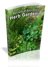 Secrets of Successful Herb Gardening - Librerie.coop