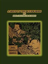 Aaron in the Wildwoods - copertina