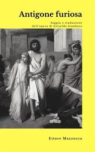 Antigone furiosa - copertina