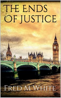 The Ends Of Justice - Librerie.coop