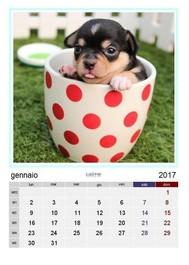Calendario amici a 4 zampe 2017 - copertina
