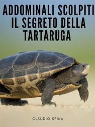 Addominali Scolpiti : Il Segreto della Tartaruga - copertina
