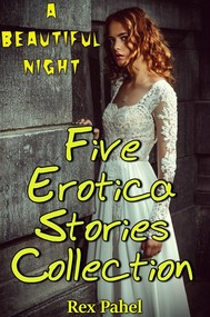 A Beautiful Night: Five Erotica Stories Collection - copertina