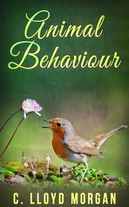 Animal Behaviour - copertina