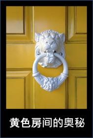 黄色房间的奥秘 - copertina