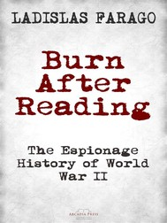 Burn After Reading - copertina
