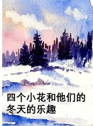 四个小花和他们的 冬天的乐趣 - copertina