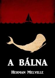 A Bálna - copertina