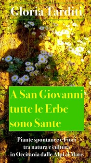 A San Giovanni tutte le Erbe sono Sante - copertina