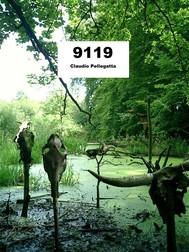 9119 - Teutoburgo - copertina