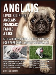 Anglais - Livre Bilingue Anglais Français Facile A Lire - copertina
