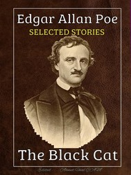 Edgar Allan Poe - Selected Stories - copertina