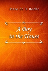 A Boy in the House - copertina