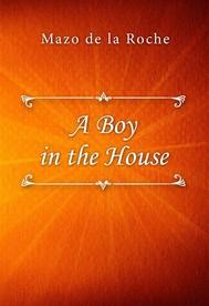 A Boy in the House - copertina