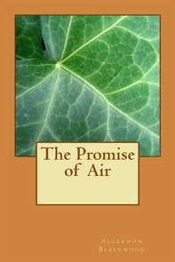 The Promise of  Air - Librerie.coop