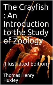 The Crayfish / An Introduction to the Study of Zoology. The International Scientific Series, Vol. XXVIII - copertina