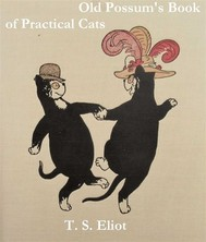 Old Possum's Book of Practical Cats - copertina