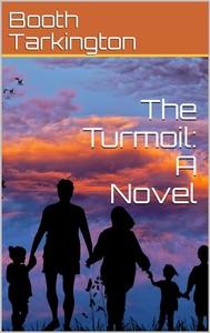 The Turmoil: A Novel - copertina