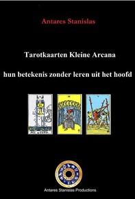 Tarotkaarten Kleine Arcana: hun betekenis zonder leren uit het hoofd - Librerie.coop