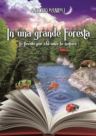 In una grande foresta - copertina