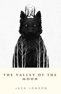The Valley of the Moon - Librerie.coop