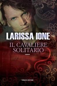 Il cavaliere solitario - Librerie.coop