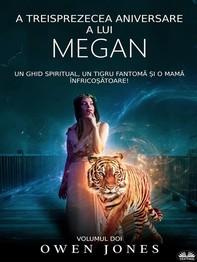 A Treisprezecea Aniversare A Lui Megan - Librerie.coop
