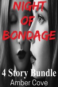 Night of Bondage 4 Story Bundle - Librerie.coop