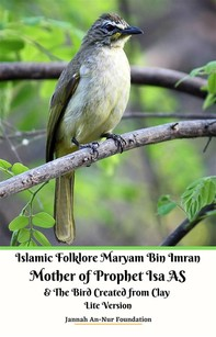 Islamic Folklore Maryam Bin Imran Mother of Prophet Isa AS and The Bird Created from Clay Lite Version - Librerie.coop