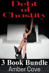 Debt of Chastity 3 Book Bundle - Librerie.coop