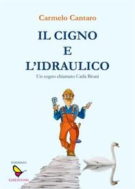 Il cigno e l'idraulico - Librerie.coop