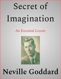 Secret of Imagination - Librerie.coop