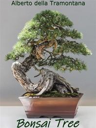 Bonsai Tree - Librerie.coop