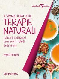 Il grande libro delle terapie naturali - Librerie.coop