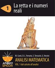 Analisi matematica I.1 La retta e i numeri reali (PDF - Spicchi) - copertina