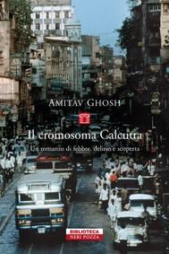 Il cromosoma Calcutta - copertina