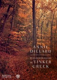 Pellegrinaggio al Tinker Creek - copertina