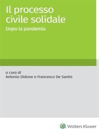 Il processo civile solidale - Librerie.coop