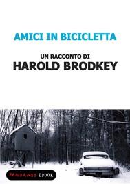 Amici in bicicletta - copertina