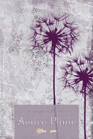 Amico Plinio - copertina