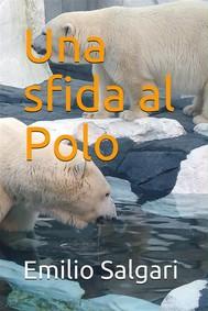 Una sfida al Polo - copertina