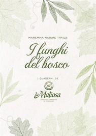 I Funghi del Bosco - copertina