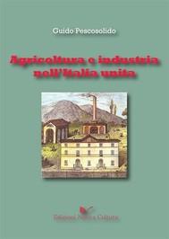 Agricoltura e industria nell'Italia unita - copertina