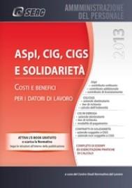APpl, CIG, CIGS E SOLIDARIETÀ - copertina